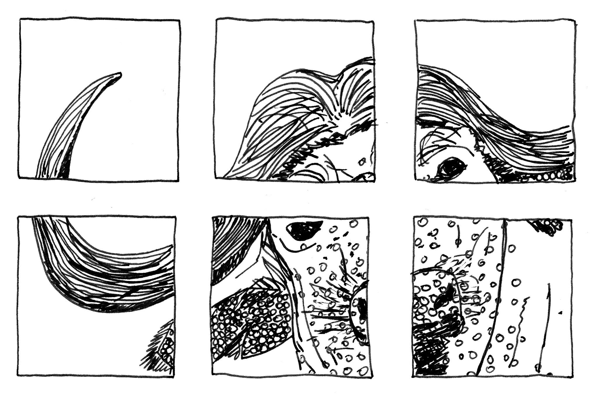 in 6 Panel unterteilte Tintezeichnung von einem Bullen (Tier).