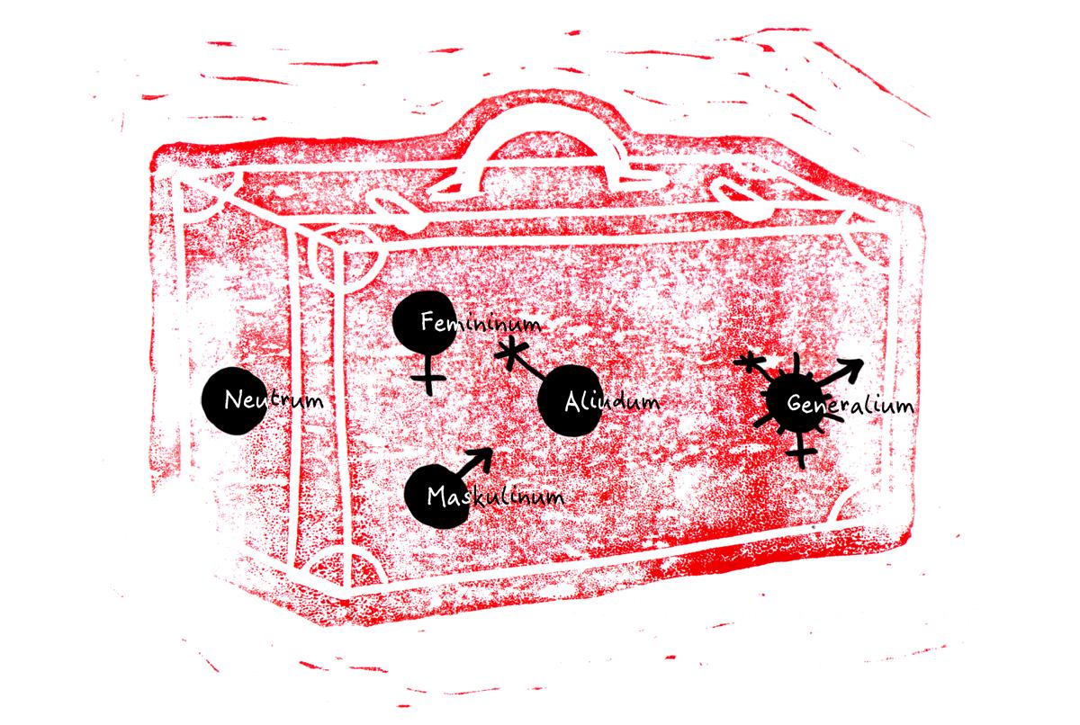 Abbildung eines Koffers in dem sich die Symbole der Genera Neutrum, Femininum, Maskulinum, Aliudum und Generalium befinden.